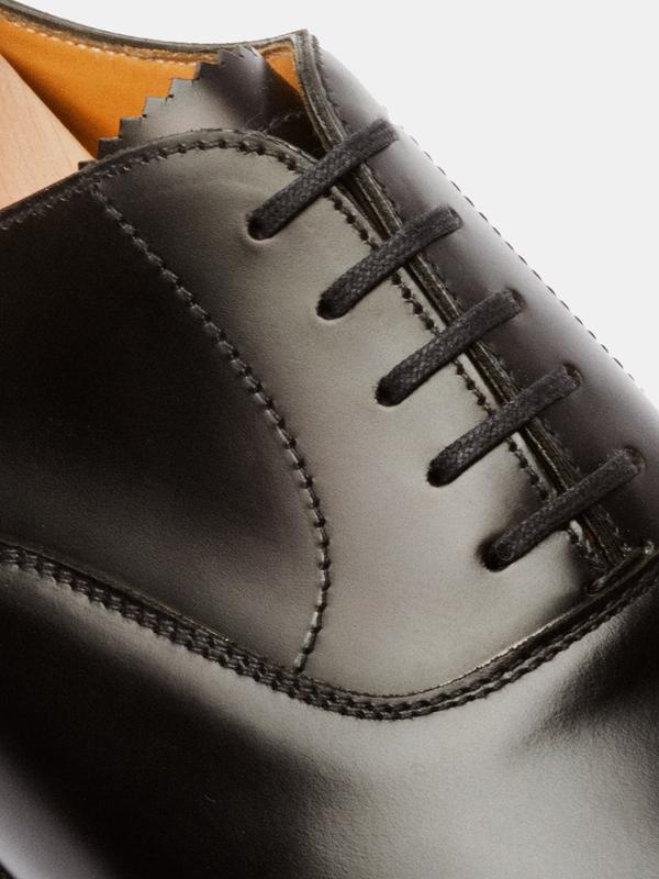 The Shoe Lace